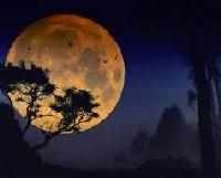 А Луна на запои все-же влияет